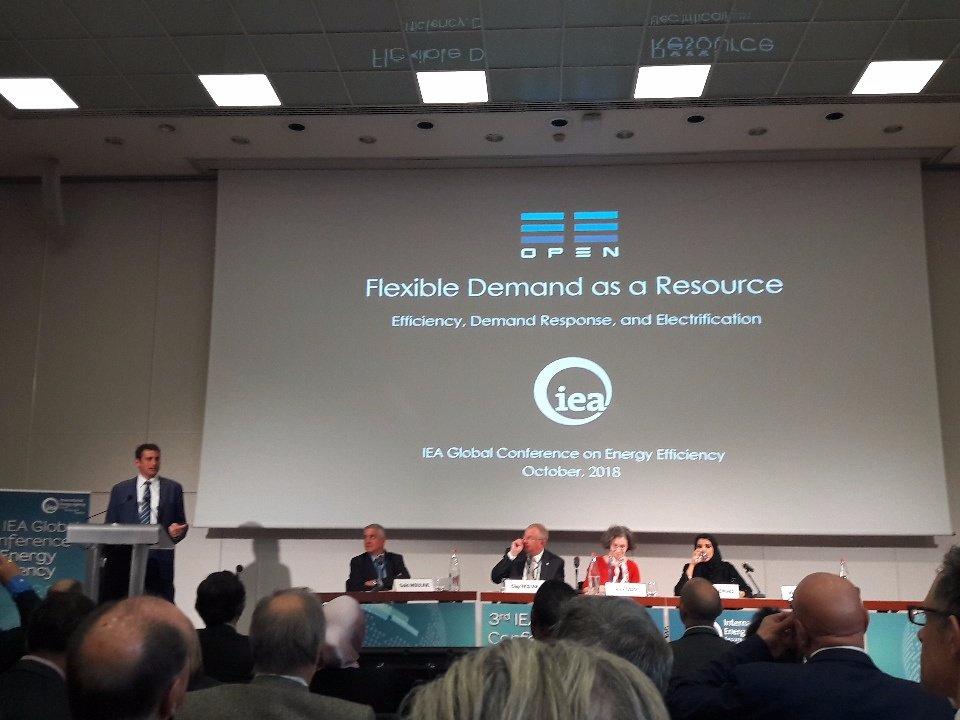 Flexible Demand as a Resource