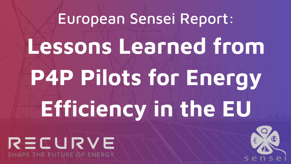 European Sensei Report: Experience and Lessons Learned from P4P Pilots for Energy Efficiency in the EU