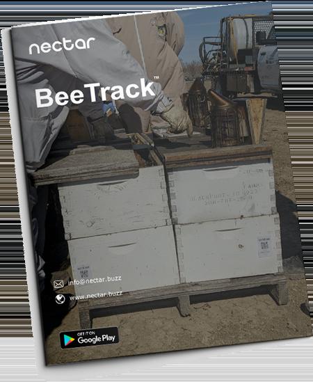 Nectar Spanish Brochure
