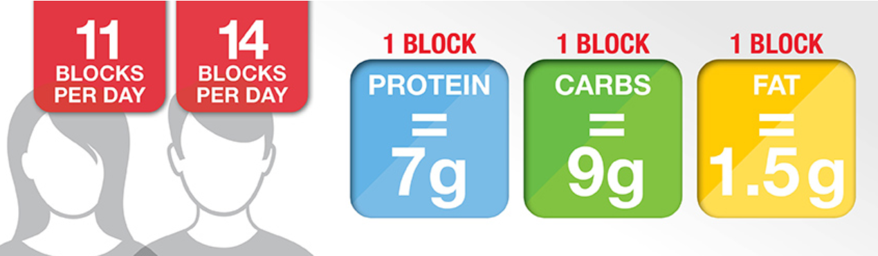 graphic showing zone diet blocks with values of macronutrients