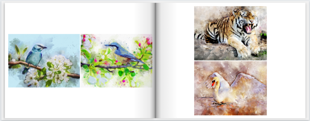 MimeoPhotos Artwork Photobook