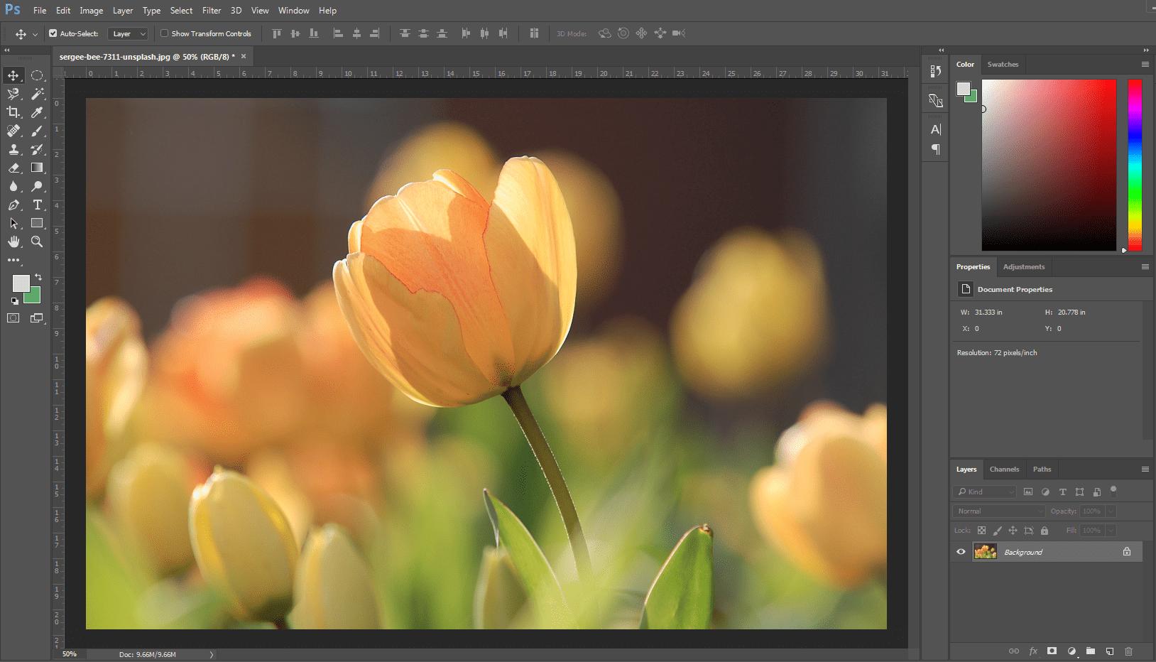 Vibrance Flower