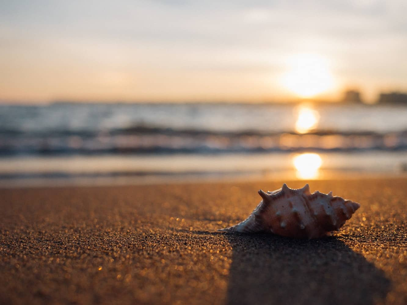 Select a focal point, like a shell or beach chair, when improving your beach photography