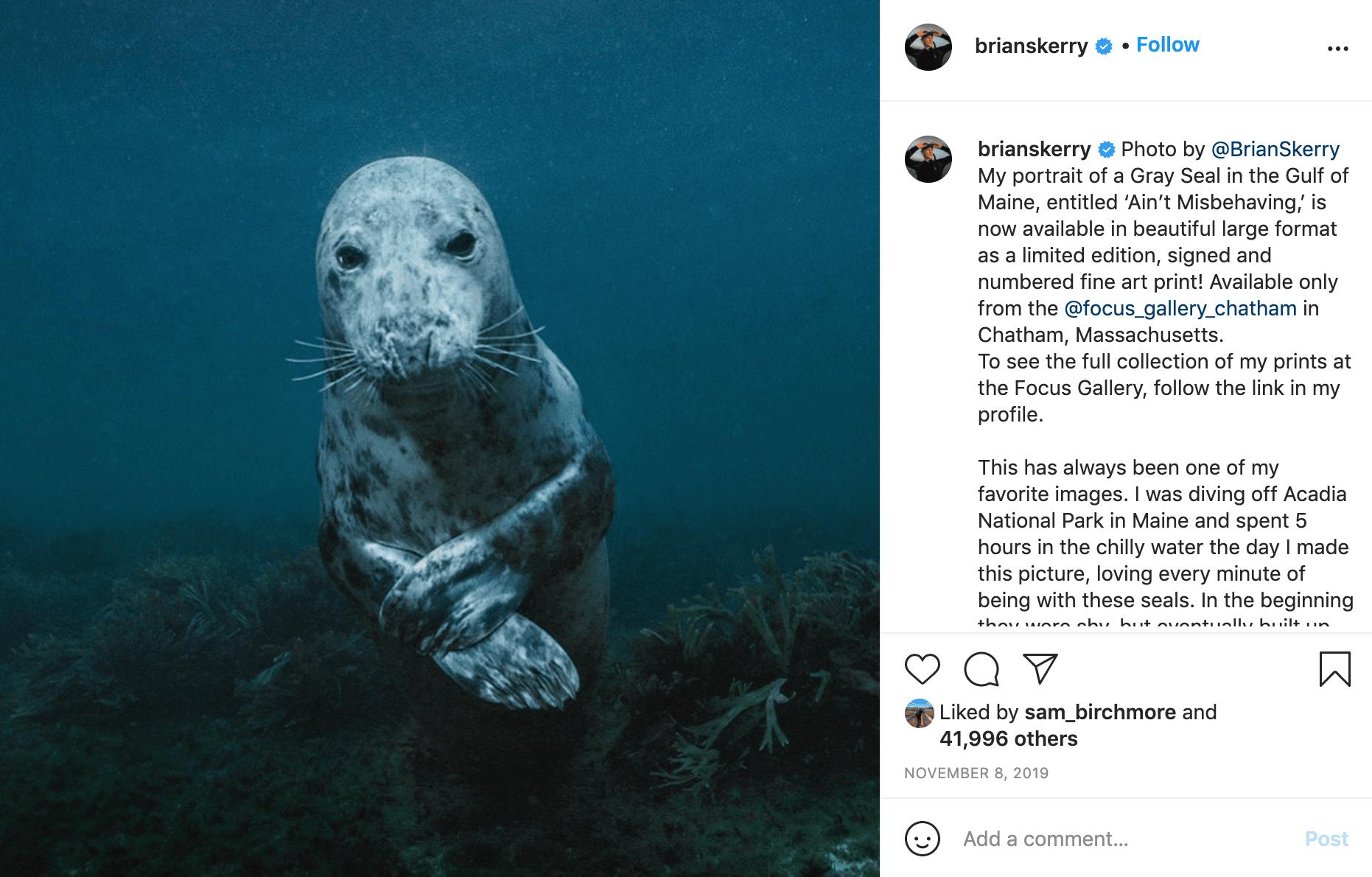 Follow Nat Geo Photographer & Nikon Ambassador - Brian Skerry