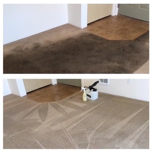Carpet cleaning by Xtreme Carpet Care