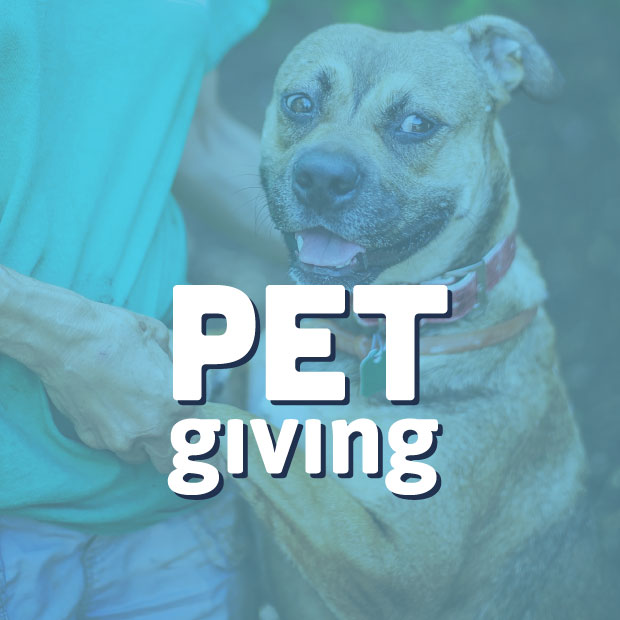 PetGiving_Logo_by_DesignGood