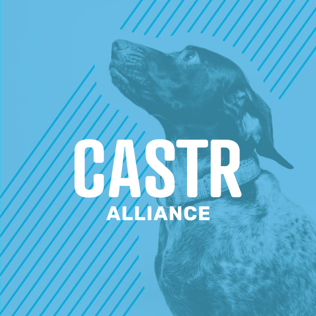 CASTR Alliance