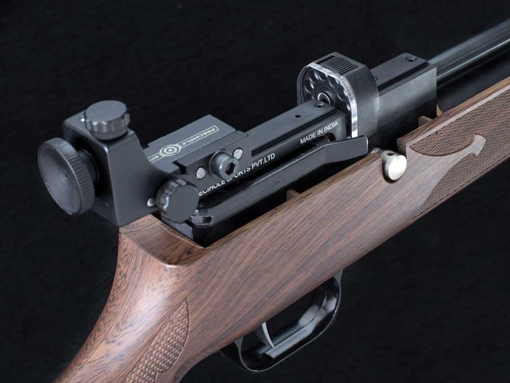 PX100 pcp air rifle with mz10 magazine