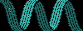 widgeon airwaves logo