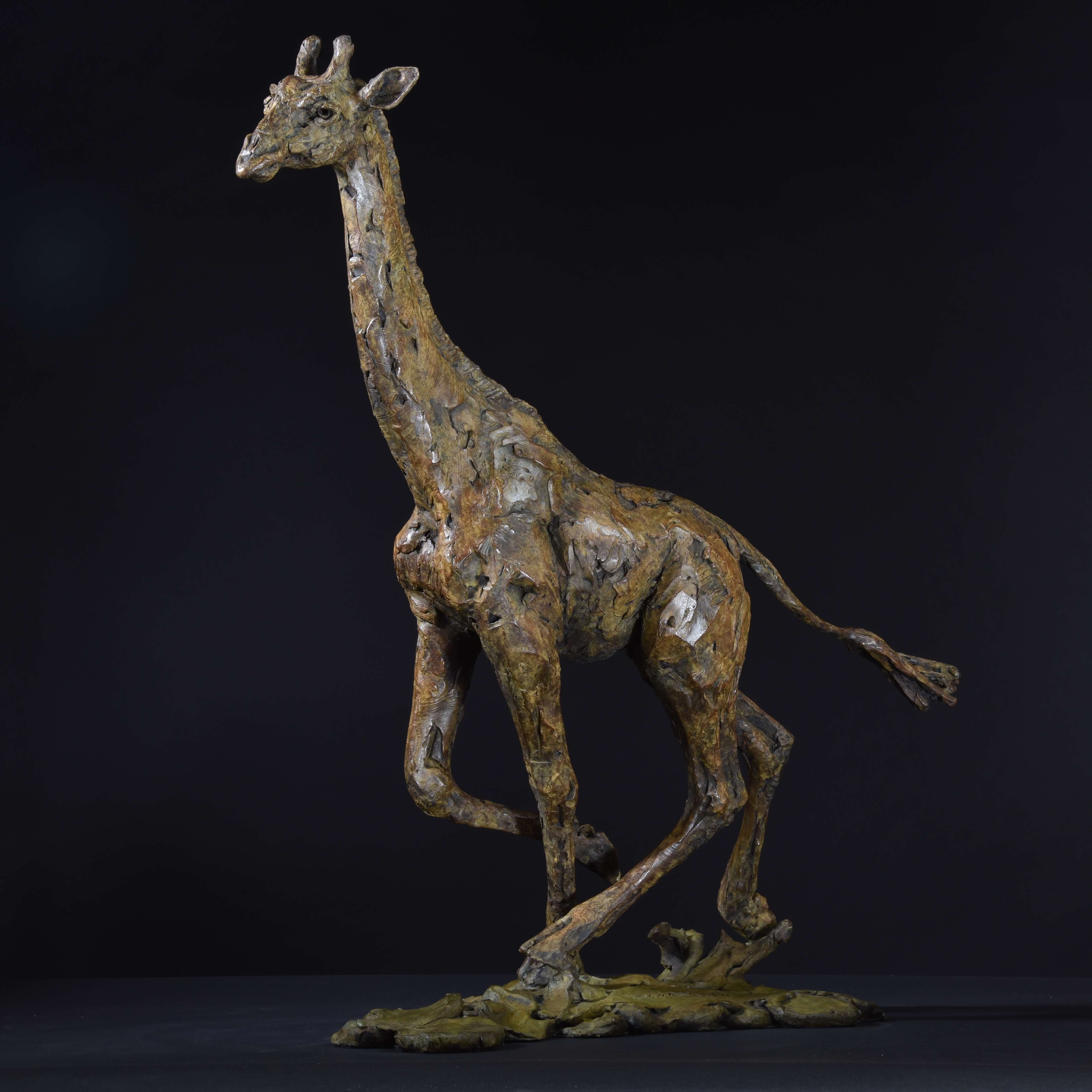 Giraffe Running by Hamish Mackie at Muse. The Sculpture Company