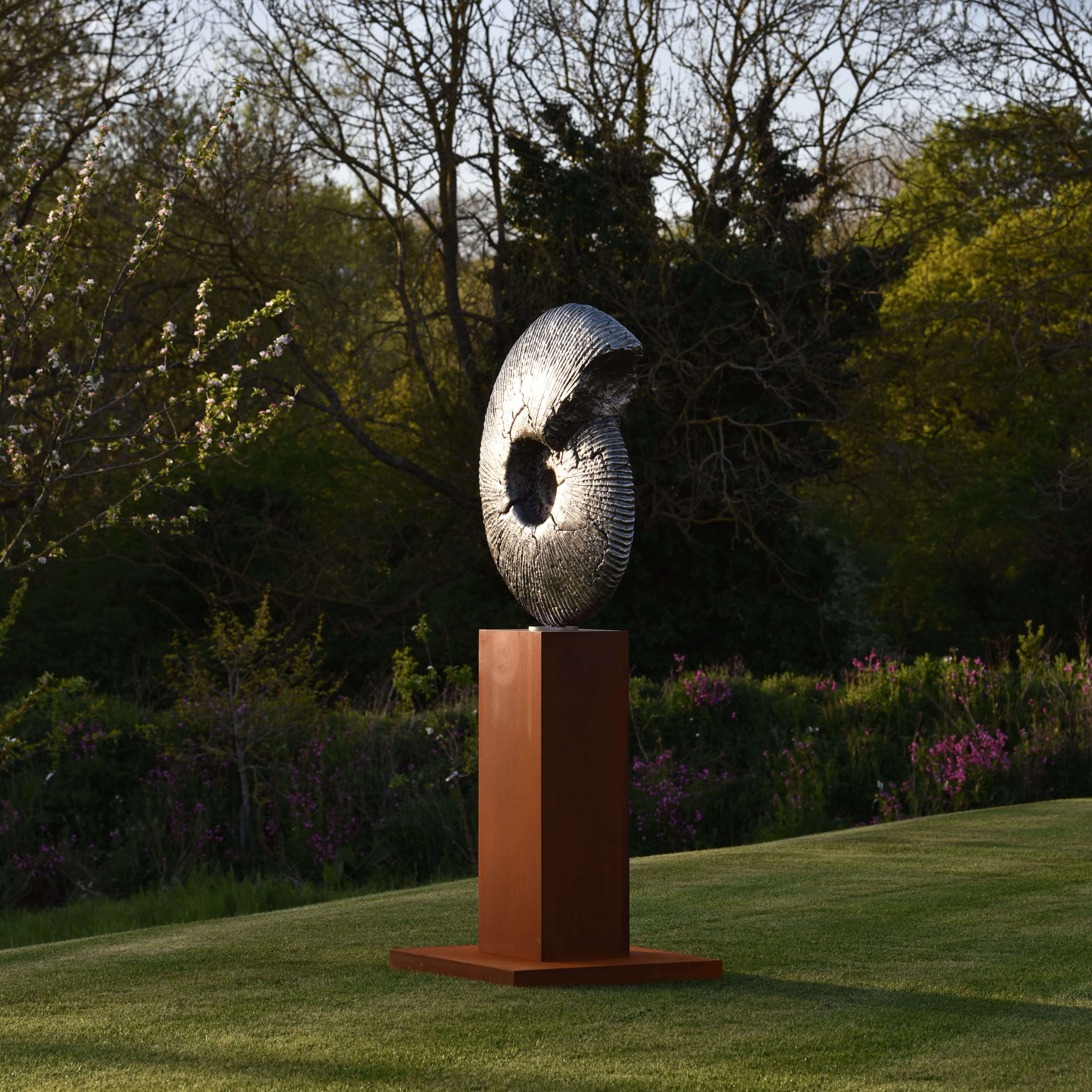 Fossil by Hamish Mackie at Muse. The Sculpture Company