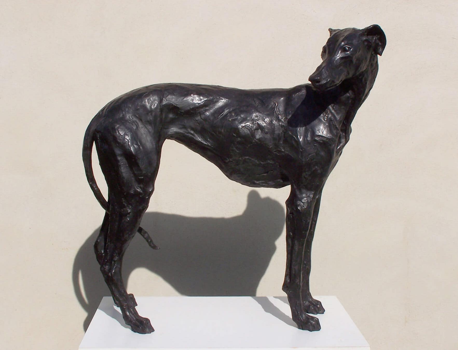 Stuart Anderson - Standing Greyhound