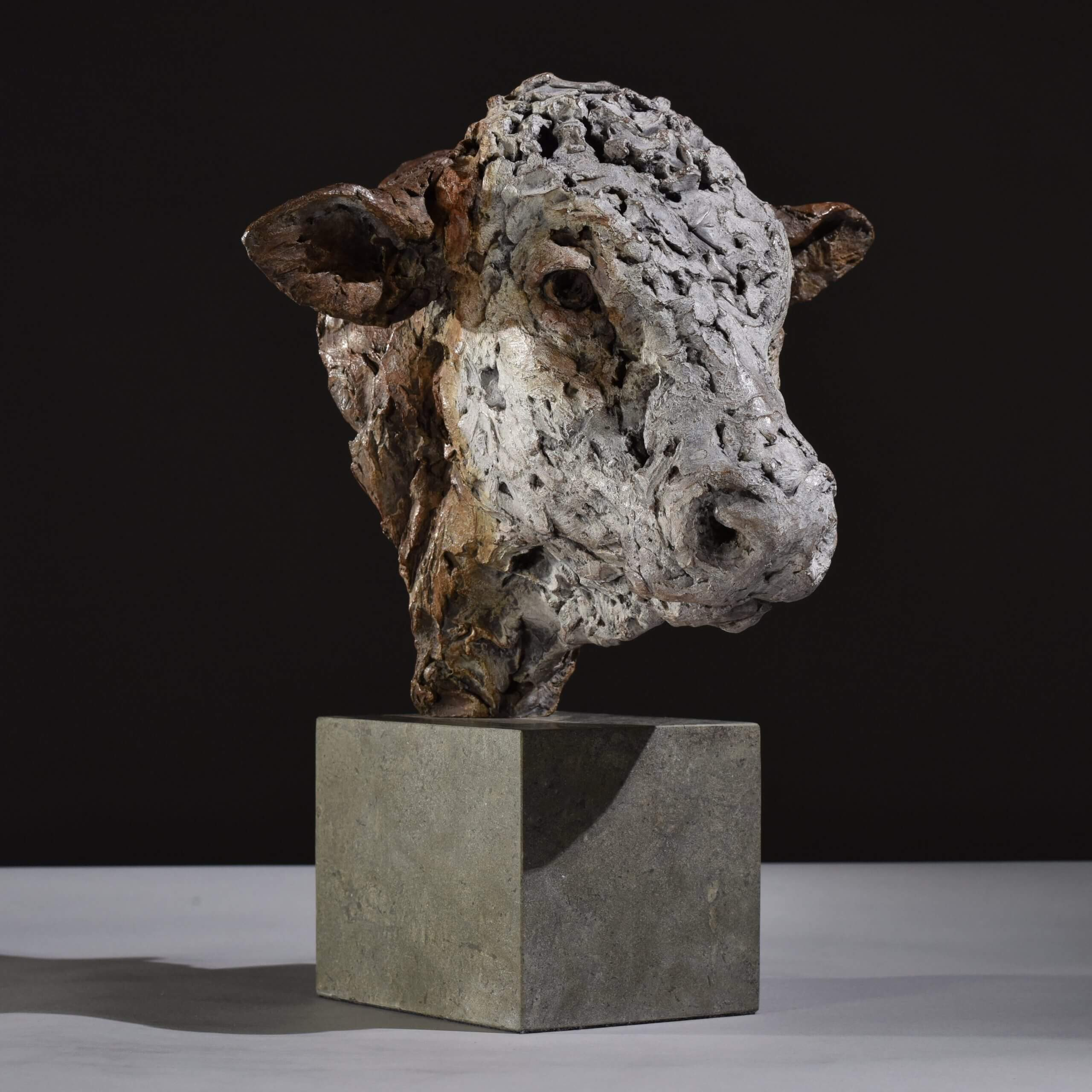 Hereford Head by Hamish Mackie at Muse. The Sculpture Company