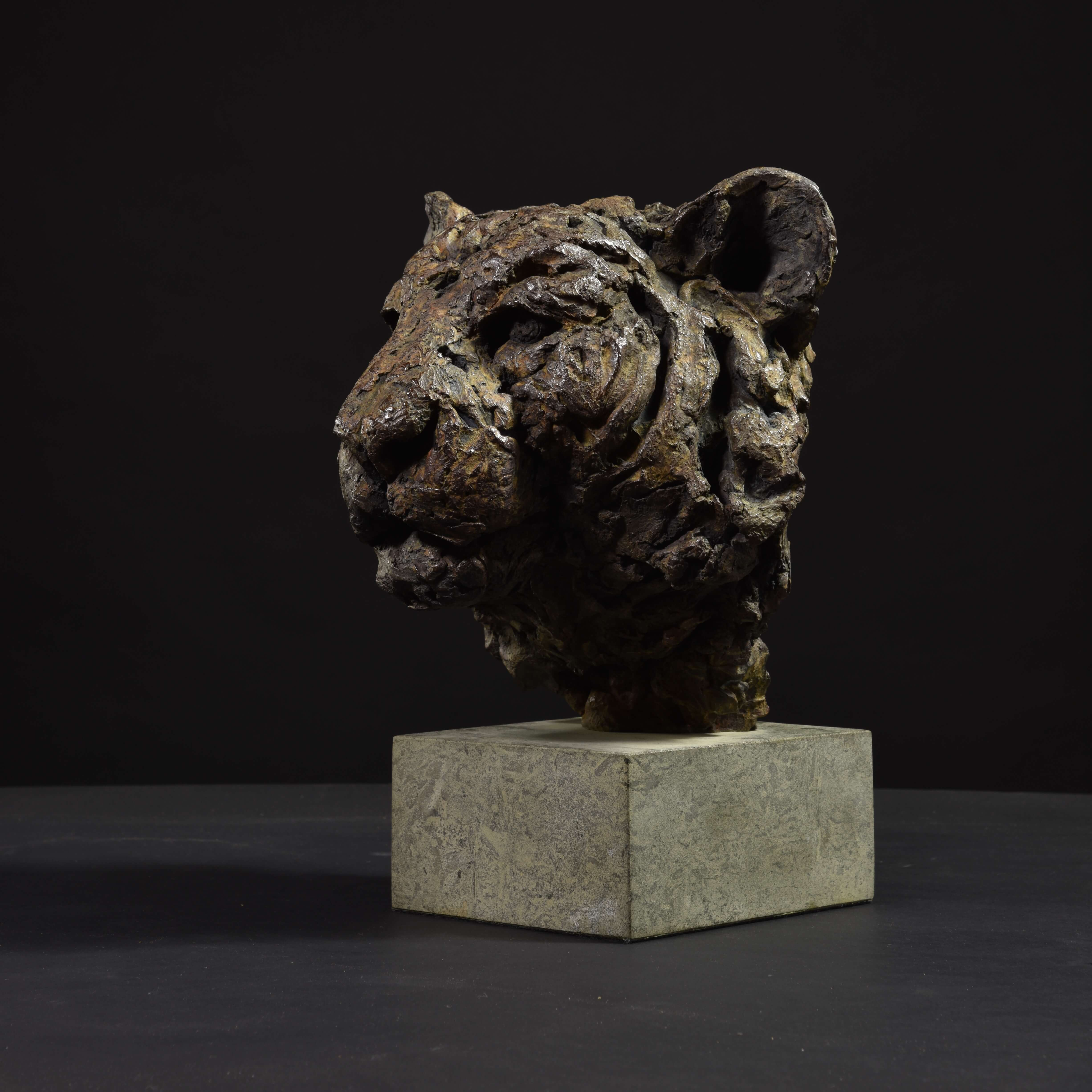 Tiger Head by Hamish Mackie at Muse. The Sculpture Company