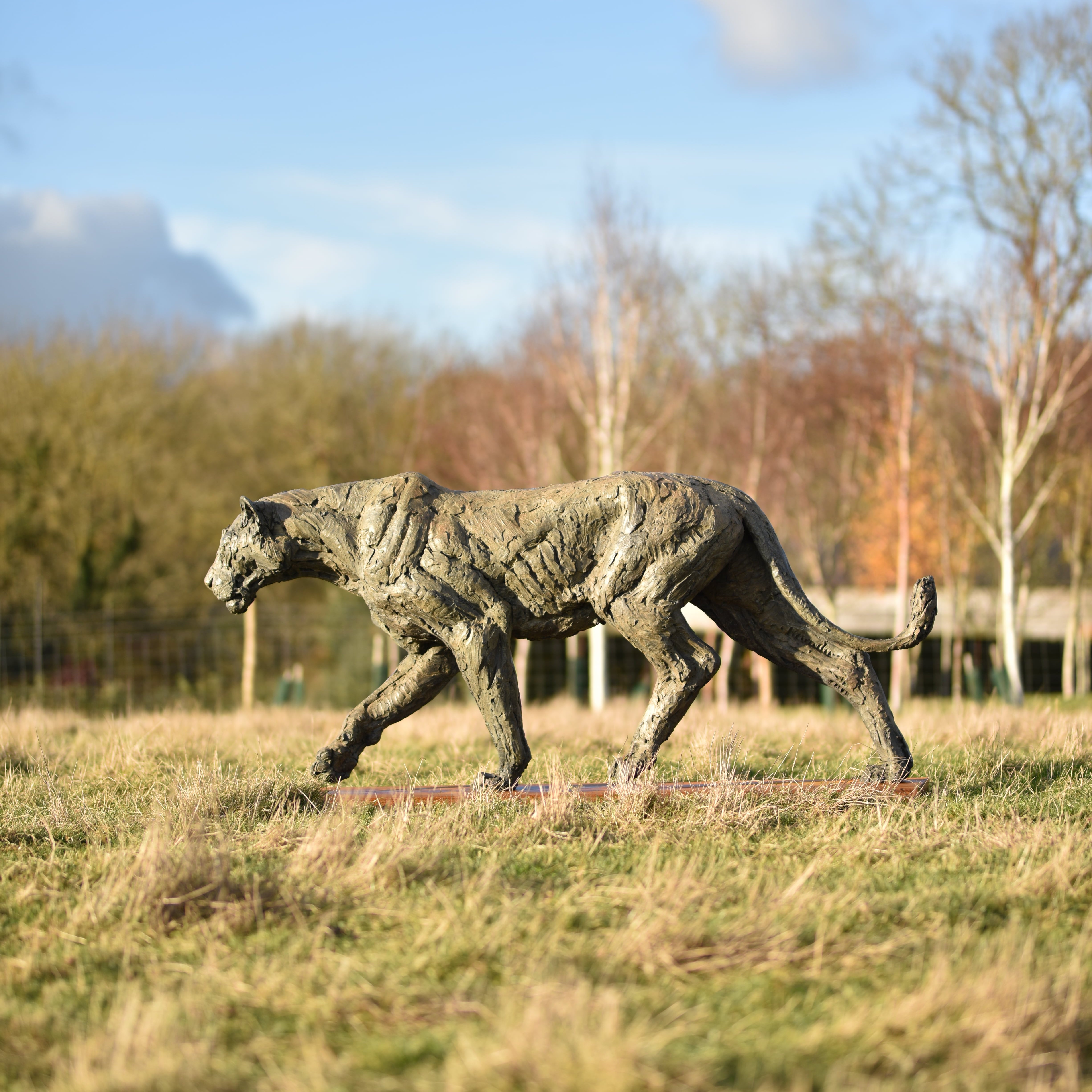 Lioness, Life Size by Hamish Mackie at Muse. The Sculpture Company