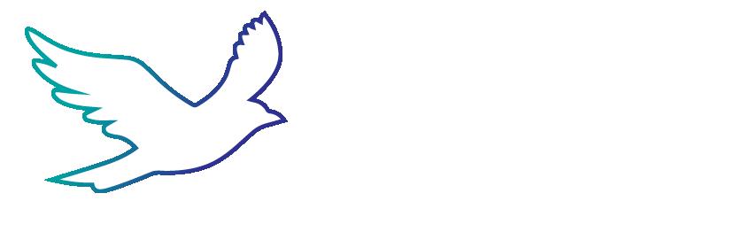 Liberty Access Logo