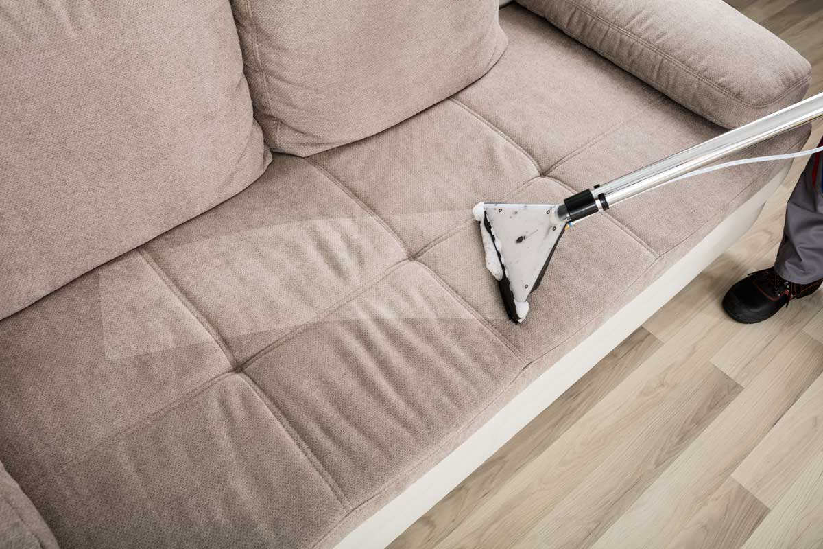photo of upholstery cleaning brighton