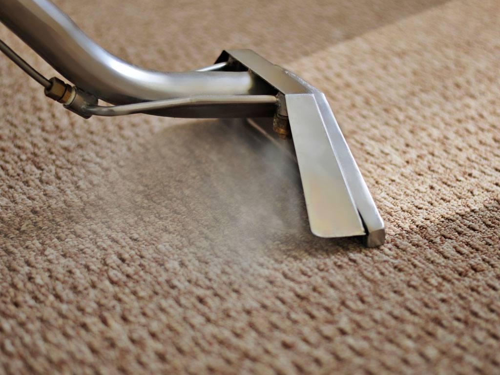 photo of carpet cleaning brighton