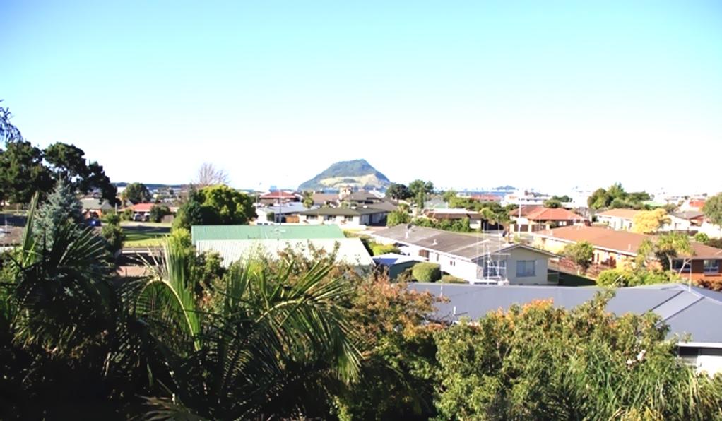 Houses in Tauranga