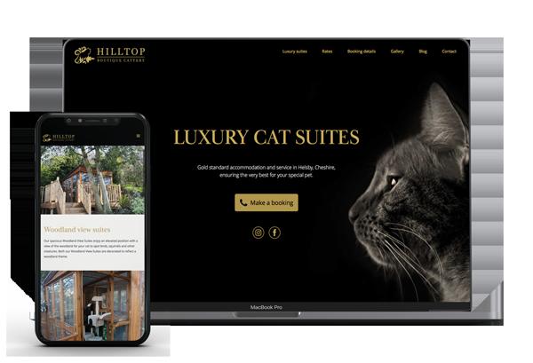 webdesign-branding-startups-hero-image
