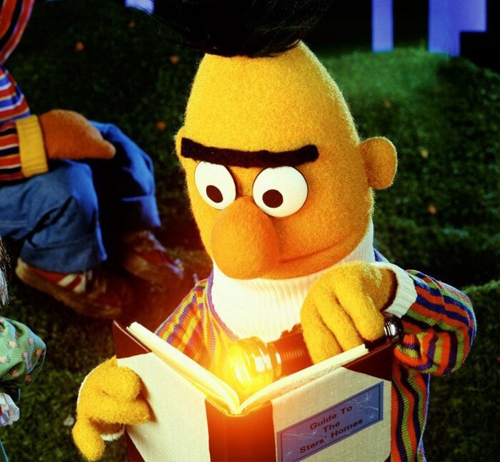 Bert of Bert and Ernie reading with a flashlight