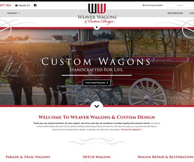 Wooster Ohio Website Design by Snyder Advertising