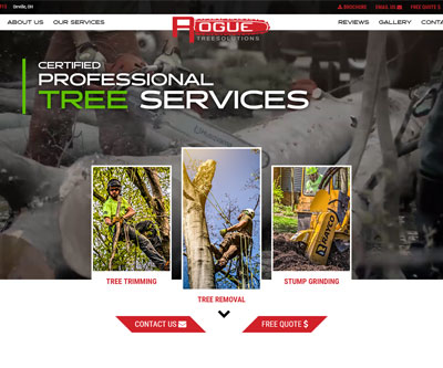 Website Design for Rogue Tree Solutions by Snyder Advertising Wooster, Ohio