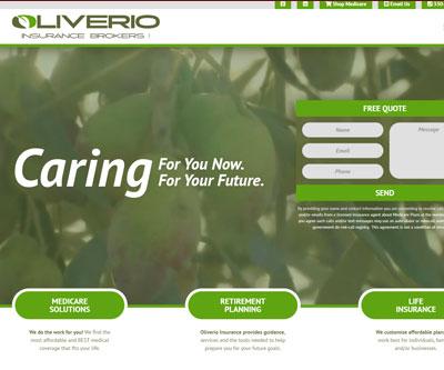 Website Design + Logo Design + Branding