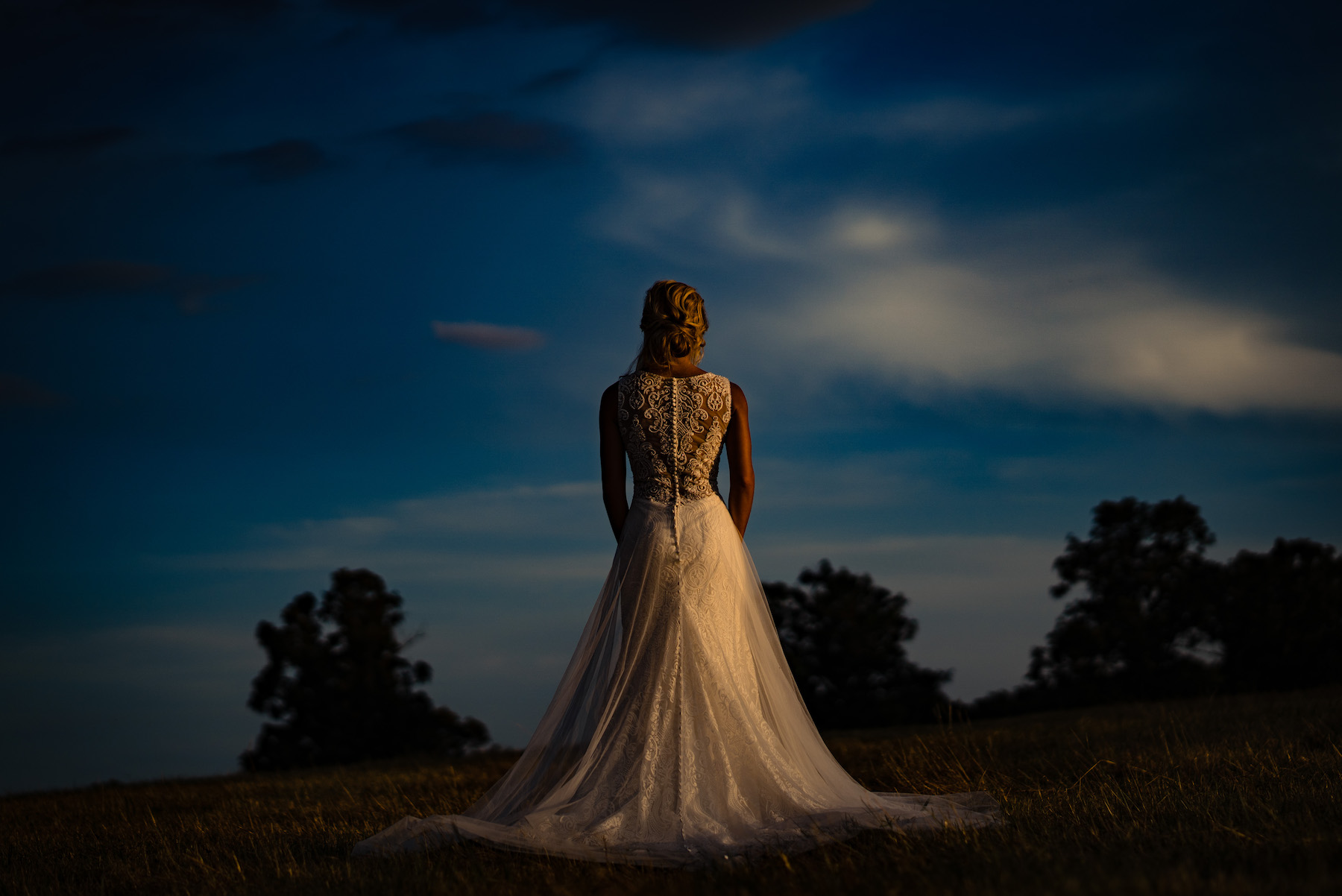 Bride with back turned. Host your small wedding or elopement up to 50 people at Osage House in Northwest Arkansas.