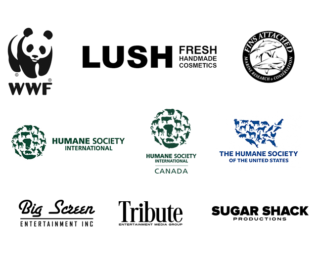 Rob Stewart Sharkwater Foundation sponsors list