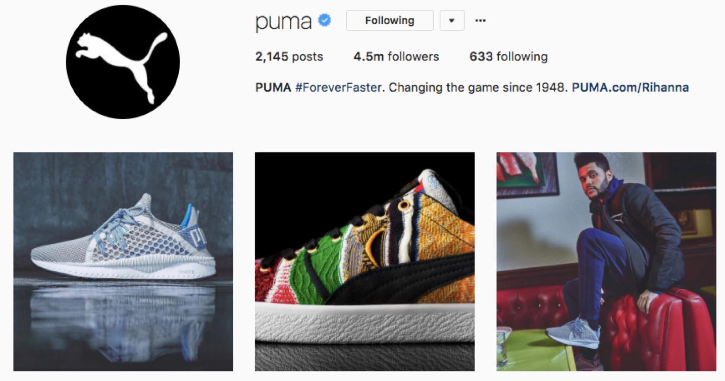 Screenshot of Puma's simple one-line bio.