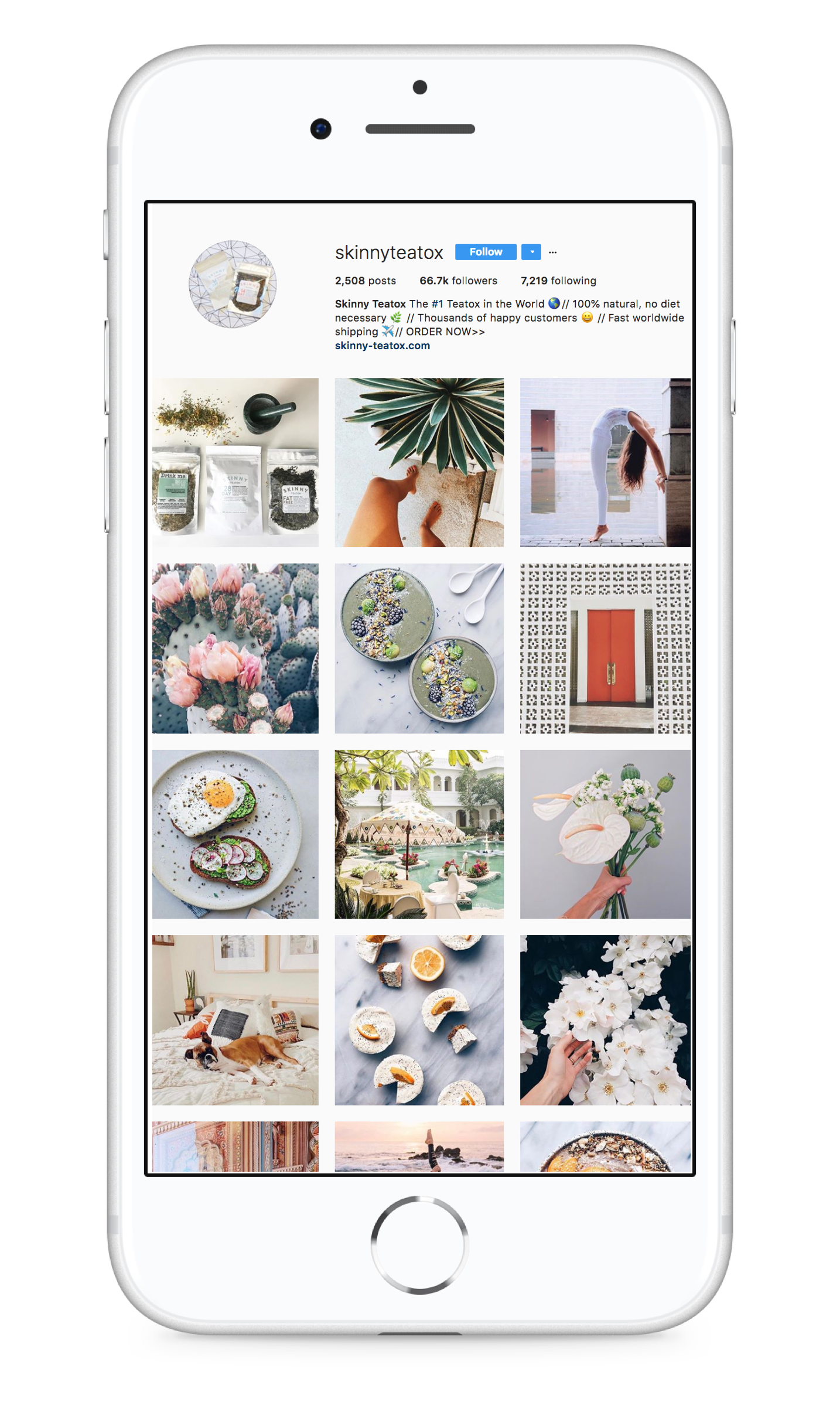 The Best Instagram Shopify Strategy for Your Store | Shogun Blog