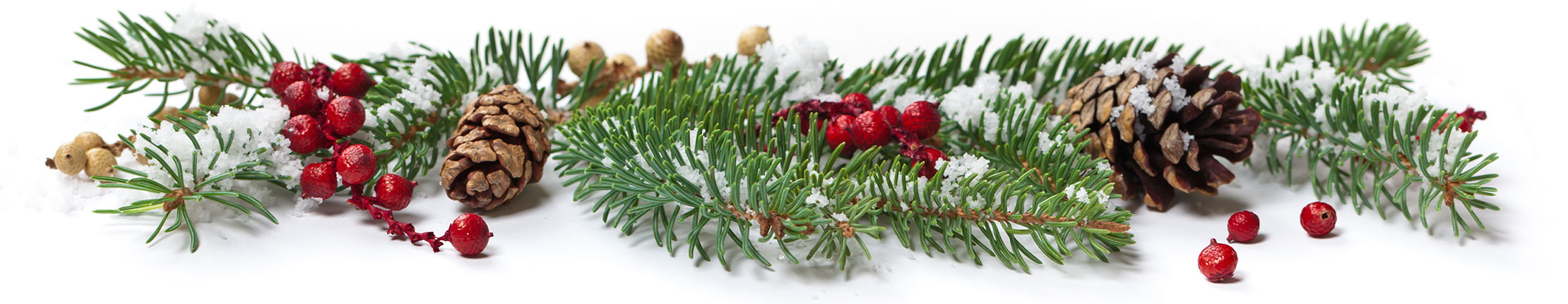 Holly Jolly Microlearning - OttoLearn Adaptive Learning