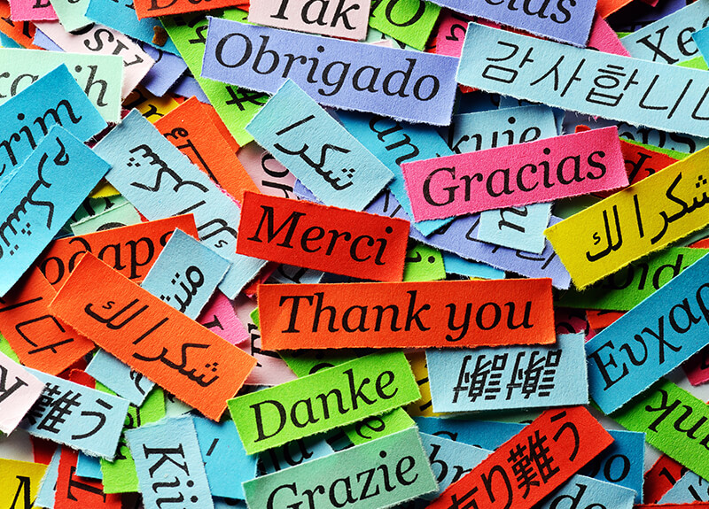 "A series of small, multicolored paper strips that say ""Thank you"" in multiple languages."