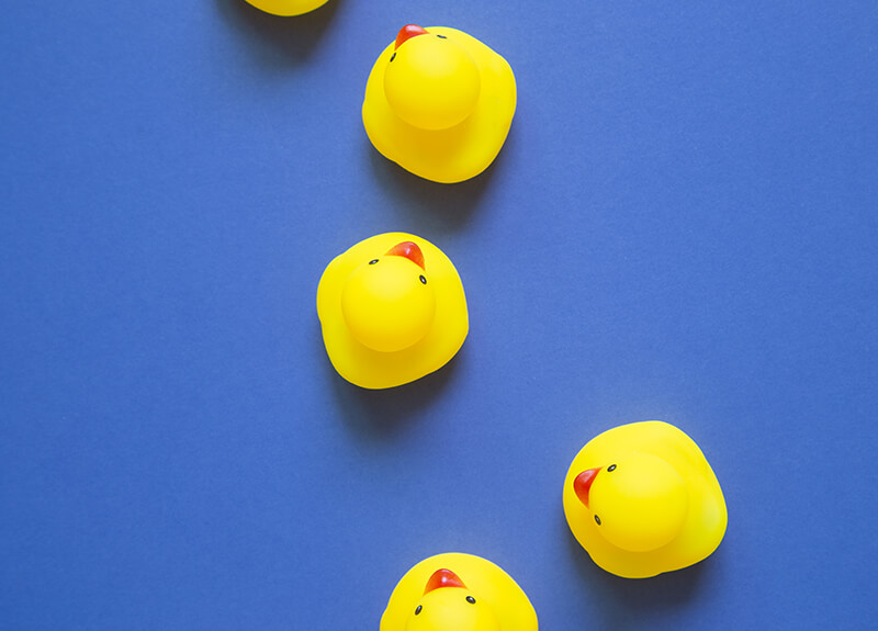 Overhead view of a line of four yellow rubber ducks on a blue surface. Three of the ducks are in a line facing forward. The other duck is slightly off to the side of the line and facing to the left.