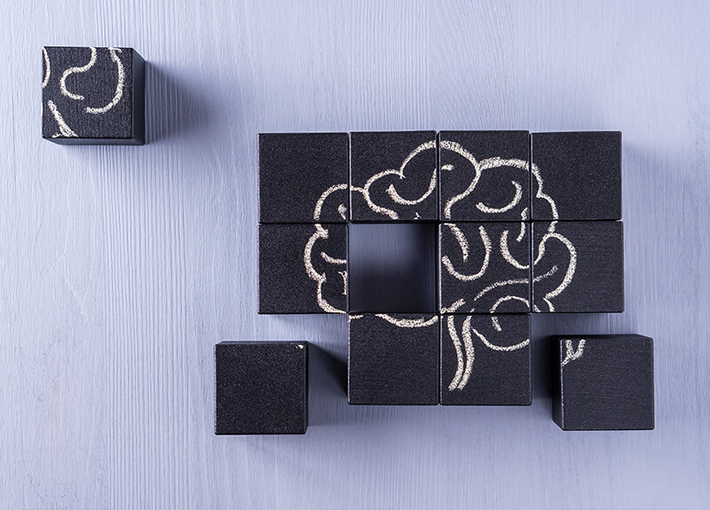 Twelve wooden blocks painted black with a brain drawn across them in white chalk, similar to a puzzle. A few of the blocks are scattered around, while the remaining 9 form the block puzzle..