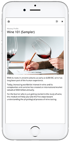 Screenshot of an OttoLearn knowledge card (Wine 101) - OttoLearn Adaptive Learning