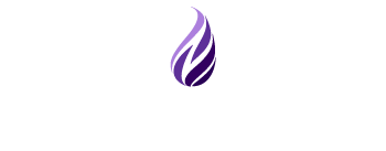The Neovation Learning Solutions logo