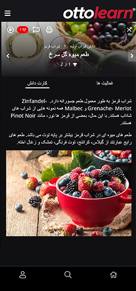OttoLearn Knowledge Card mockup showing text in Persian (using the built-in translate tool).