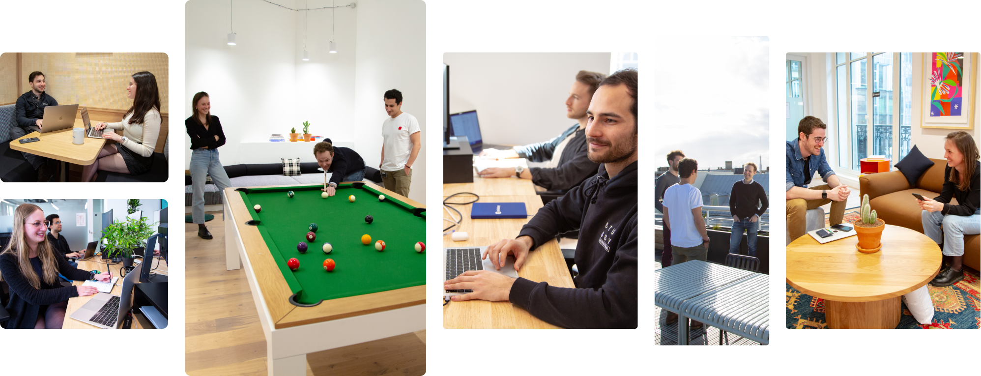 Employees Working and the Mindsay Office