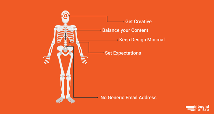 Anatomy of an Email Newsletter