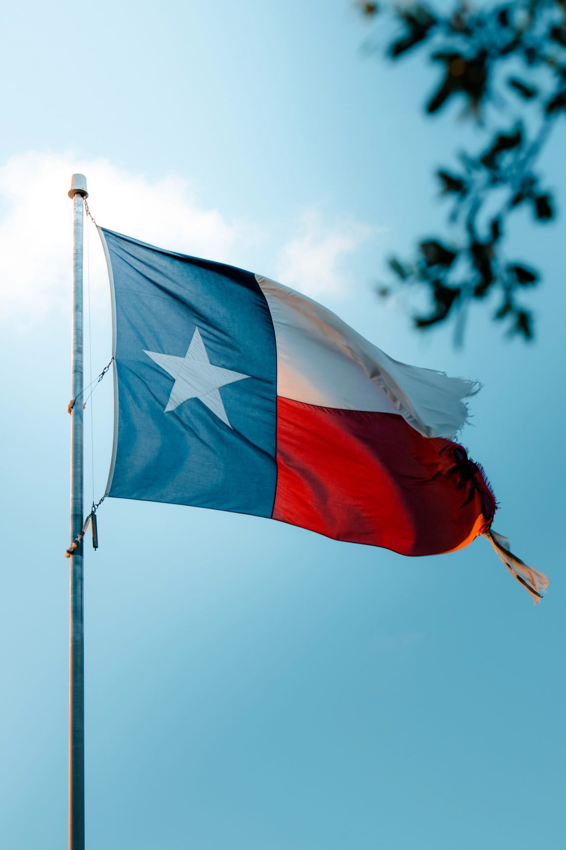 Texas branded a top state for businesses to survive the pandemic