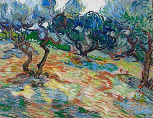 Van Gogh and the Olive Groves: Dallas exhibition