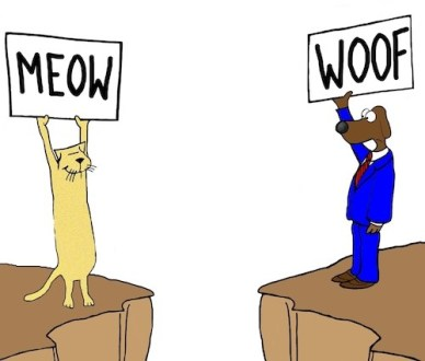 Cat and dog trying to communicate