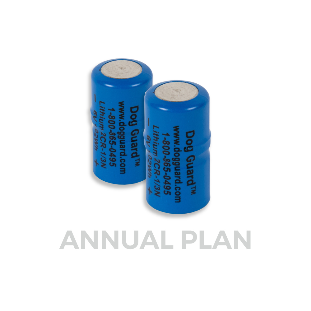 DG 5000 / DG 9 XT Battery Annual Plan