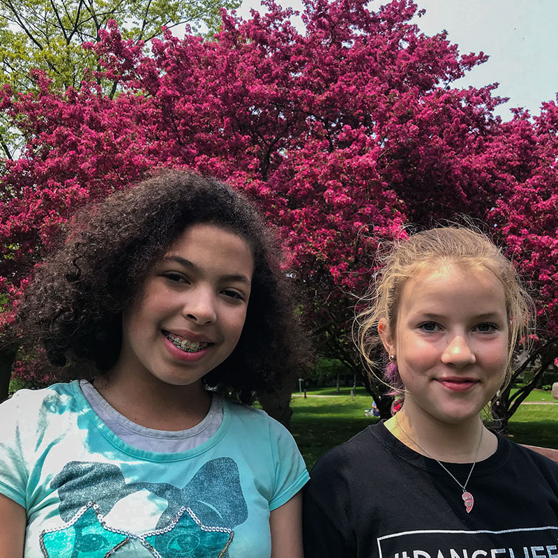 spring-friends