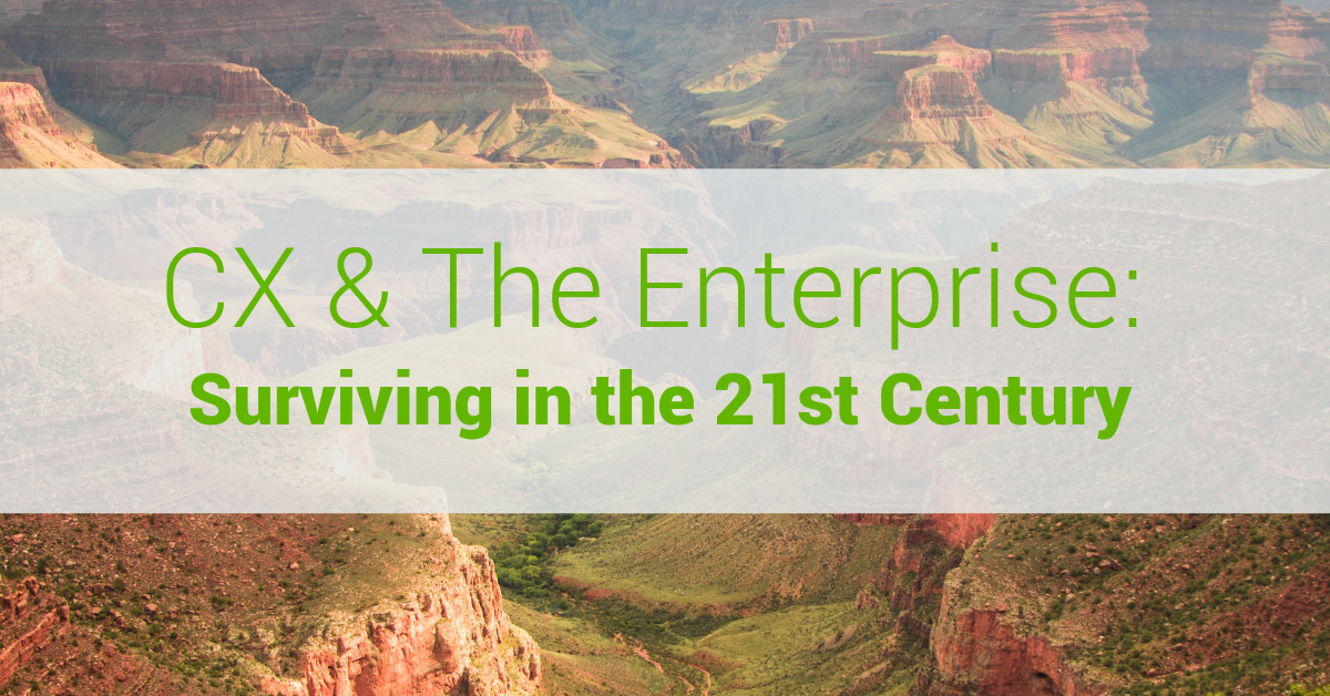 CX & The Enterprise: Surviving in the 21st Century