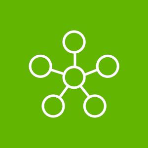 Systems Integrators