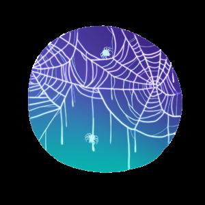 Spiderweb in Spanish