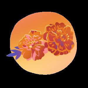 Marigold in Spanish